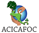 Acicafoc