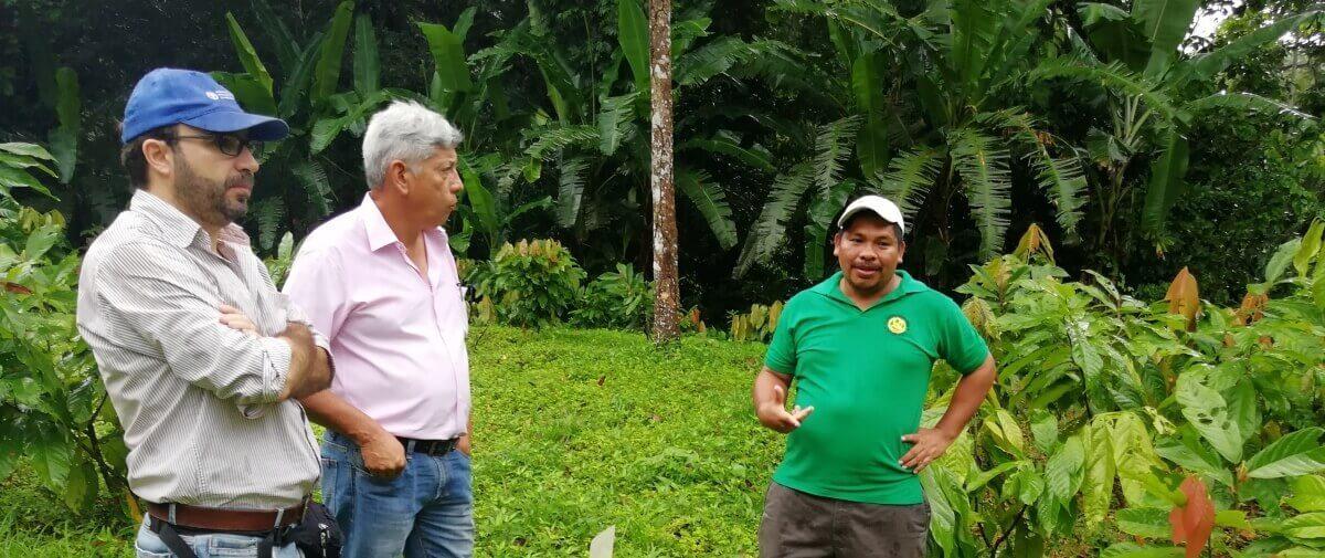 Reunión y visita de campo con miembros de FAO-Panamá a los grupos ACODAAC y COCABO