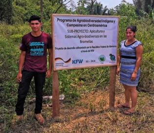 Sub-Proyecto Apicultura y Sistemas Agro-biodiversos en las Bromelias Belice
