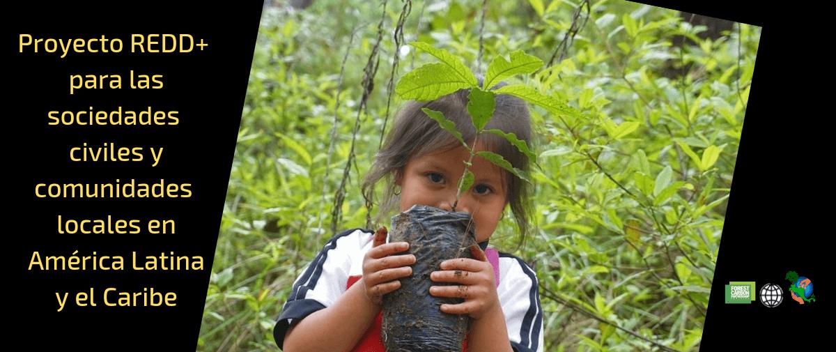 Llamado A Concurso Para Organizaciones De La Sociedad Civil, A Través Del Proyecto REDD+
