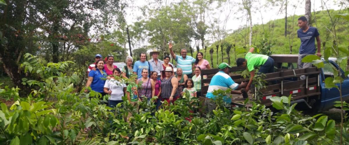 Producción de alimentos sanos, biodiversos y utilizando prácticas agroecológicas, en el cantón de Guatuso, zona norte de Costa Rica