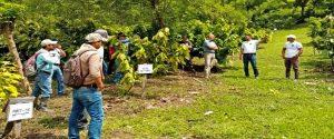 Asociación de Ganaderos Agroecoturísticos de Dos Ríos de Upala
