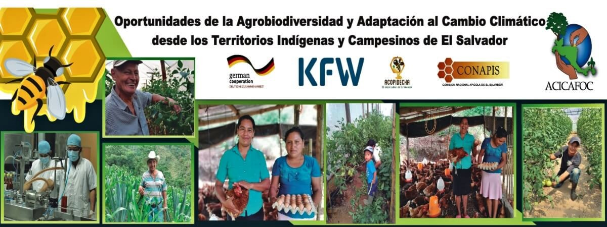 Oportunidades de la agrobiodiversidad y adaptación al cambio climático desde los territorios indígenas y campesinos de El Salvador