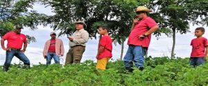 Proyecto Fincas Escuela: Alternativas para la Sostenibilidad Productiva y la Conservación en el Corredor Biológico Rincón Cacao