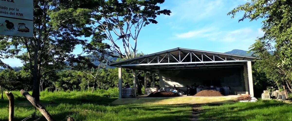 Cadenas de Valor en la Producción Orgánica de Cacao