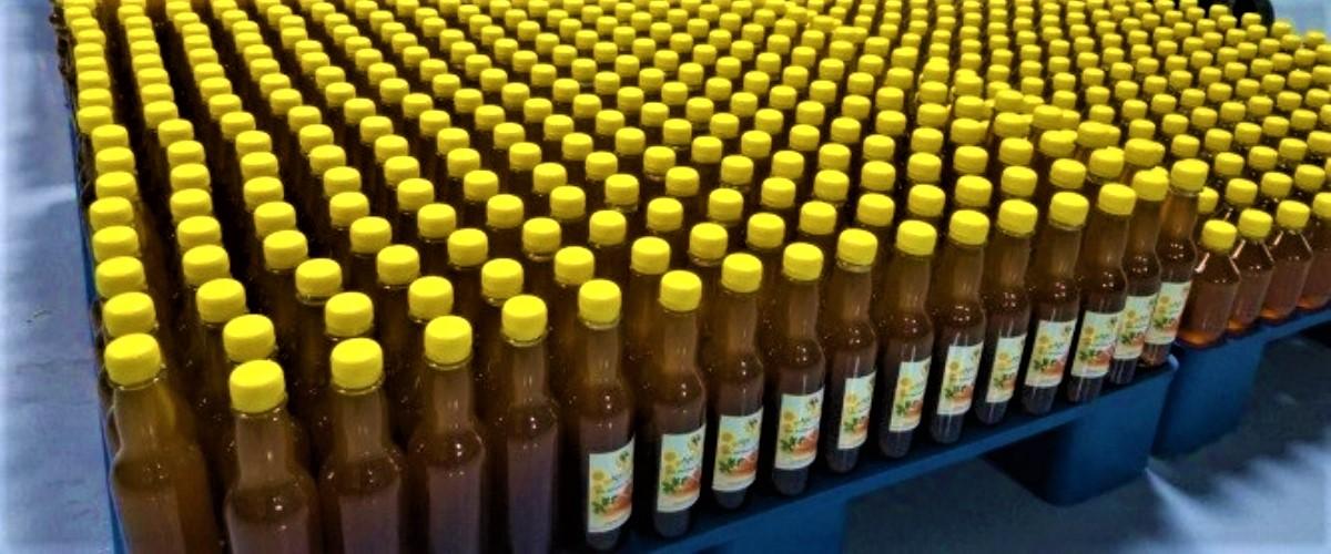 Apicultores de Chalatenango, dan un salto innovador en la comercialización de miel