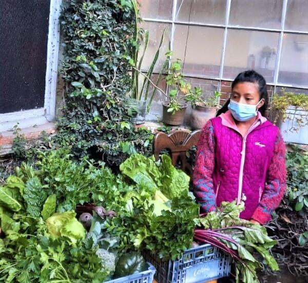 Exposición de productos hortícolas