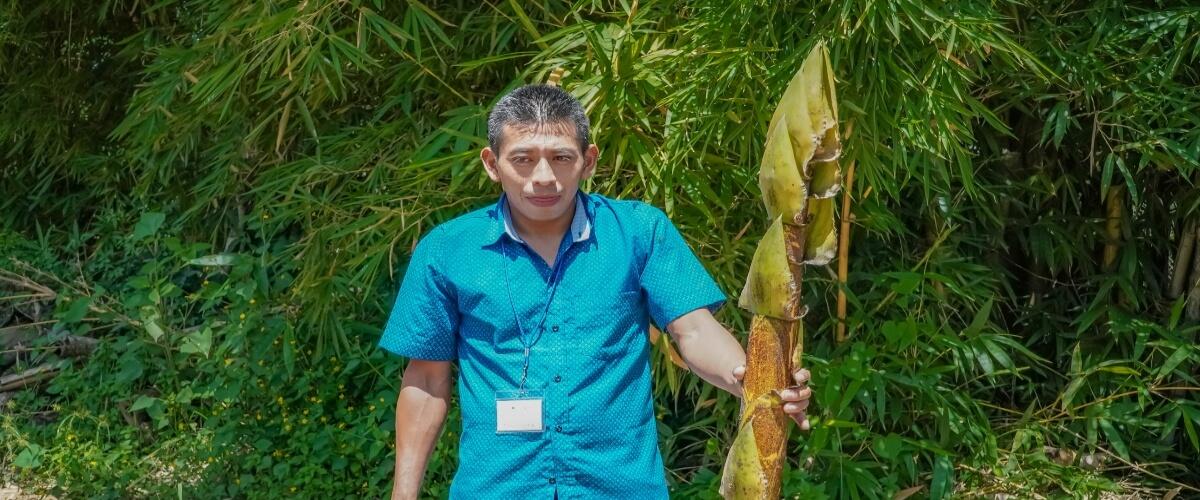 Participantes del Diplomado Sobre Agroecología y Agricultura Orgánica, Comparten Experiencias y Elaboran Bioestimulantes a Base de Bambú.