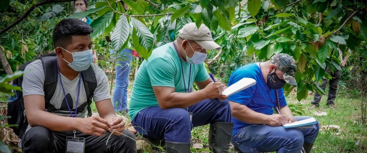 Participantes del Diplomado en Agroecología y Agricultura Orgánica, realizan visita de campo para aprender haciendo