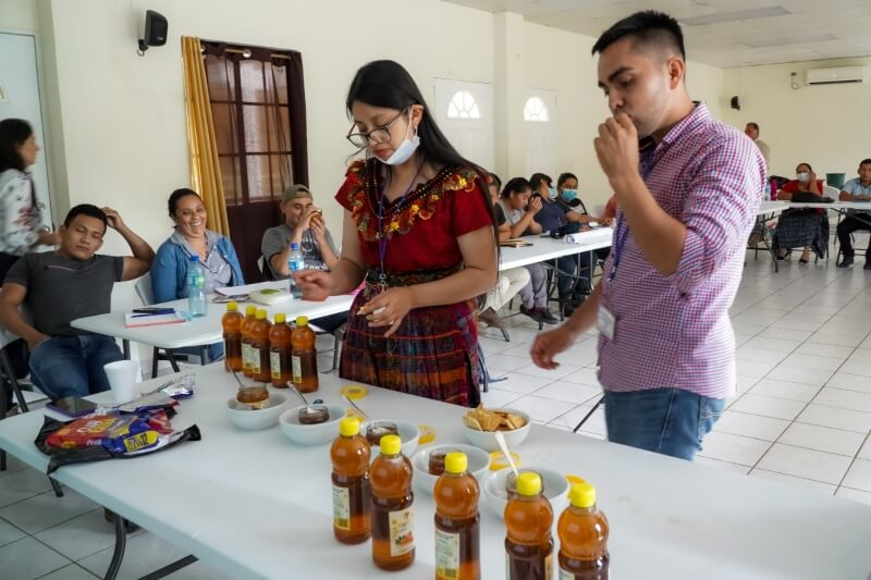 degustación de miel de abeja