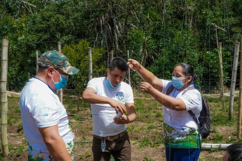 Participantes del Diplomado Sobre Agroecología y Agricultura Orgánica, visitan finca productiva