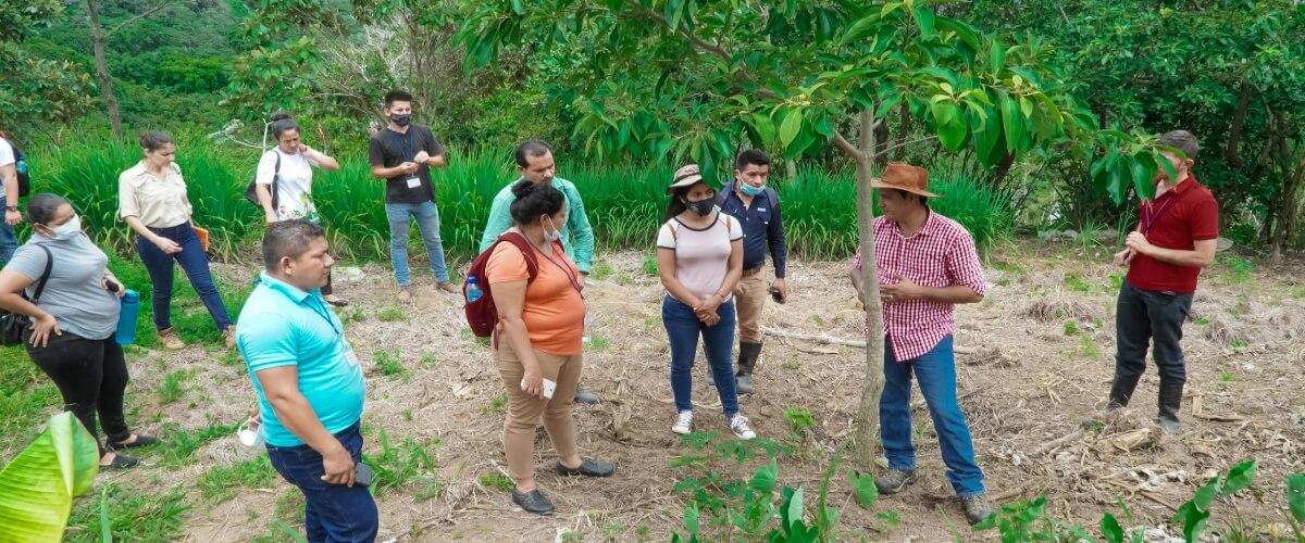 Participantes del diplomado sobre agroecología y agricultura orgánica, visitan finca agroecológica Bella Vista y elaboran biofertilizantes y repelentes naturales para el control de plagas y enfermedades