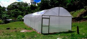 Apicultores y promotores apícolas de   Sayaxché, Petén, Guatemala, participan de Diplomado en Apicultura Tropical.